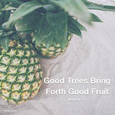 Peculr.com - Online Christian Community Best Fruits, Community, Christian, Inspiration, Food, Biblical Inspiration, Meals, Motivation