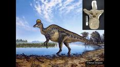 """Royal Tyrrell Museum Speaker Series 2015 François Therrien - Royal Tyrrell Museum of Palaeontology """"Alberta: Land of Dinosaurs and Other Palaeontological Won. Dinosaurs, Lion Sculpture, Museum, Statue, Videos, Art, Art Background, Kunst, Performing Arts"""