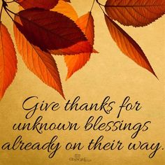 Thank You, God. Those simple words carry so much meaning. We should always give thanks to God for everything He does for us and all of our blessings. Thanksgiving Prayer, Thanksgiving Blessings, Thanksgiving Greetings, Thanksgiving Crafts, Thanksgiving Sayings, Thanksgiving Pictures, Thanksgiving Appetizers, Thanksgiving Outfit, Thanksgiving Holiday
