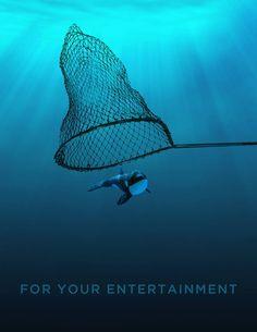 Anti-captivité des orques