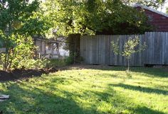 Master Gardening in a Shady Yard >> http://blog.diynetwork.com/maderemade/2013/05/18/shade-plant-landscaping/?soc=pinterest