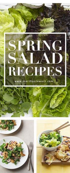 Spring Salad Recipes | Martha Stewart Living