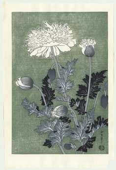 Benji Asada (1899 - 1984) - Poppy (Japanese woodblock print)