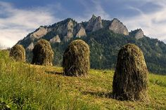 Pieniny, Poland Sitting on top of these at the farm Oh ! The memories ! I was working very hard on field when I was kid. It was great fun as well :) The Places Youll Go, Places To See, Visit Poland, Native Country, Central And Eastern Europe, Poland Travel, Heart Of Europe, Historical Monuments, Krakow