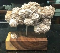 """Emotion II"" Desert Rose, Acacia Wood from Light Within Collection by Fine Artist Dorit Schwartz – Las Vegas"