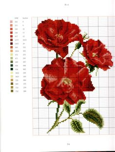 Gallery.ru / Фото #70 - цветочки - ladushka333