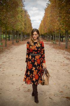 Tuileries Gardens In The Fall (via Bloglovin.com )