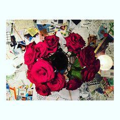 Red roses at the best coffee place in town. @nextdoorcoffee #copenhagen #danmark #københavn