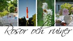 Rosor och ruiner: Dynlåda Ruiner, Ladder Decor, Wreaths, Table Decorations, Garden, Home Decor, Inspiration, Environment, Plants