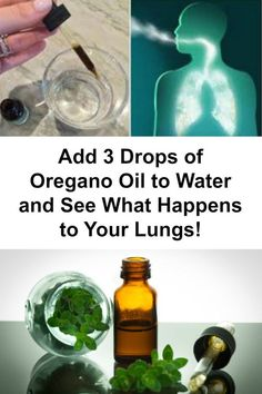add-3-drops-oregano-oil-water-see-happens-lungs // On the other hand, oregano oil has been used in the treatment of dysentery, respiratory infections, jaundice, chronic inflammation, and urinary tract infection in the Middle East and its potent antibacterial properties have been confirmed by many studies.