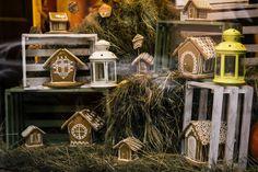 2016, beautiful, beauty, celebration, christmas, city, cozy, decor, Львів, europe, event, explore, festive, garland, happy, holiday, inspiration, inspire, love, lviv, merry, new, outside, photo, photographer, photography, rustic, sonjachni, street, travel, Ukraine, wanderer, winter, xmas, year