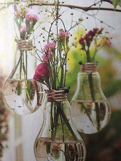 Idee plantjes glas