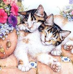 Sleeping cat painting. Debbie Cook