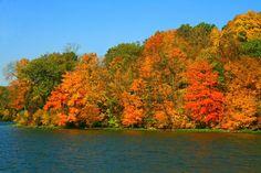Fall in Iowa