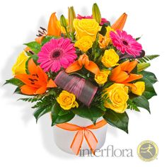 {Viva} bright mixed arrangement in ceramic container pink, yellow & orange rose lily & gerbera