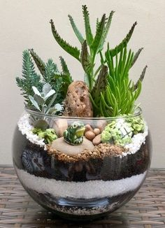 one amazing terrarium! -This is one amazing terrarium! -is one amazing terrarium! -This is one amazing terrarium! Mason Jar Succulents, Succulent Centerpieces, Succulents In Containers, Succulent Arrangements, Cacti And Succulents, Planting Succulents, Mason Jars, Succulents Wallpaper, Succulents Drawing