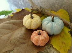 Pumpkins Thanksgiving fall home decoration miniature clay Autumn rustic Thanksgiving pumpkins - yellow orange teal blue - harvest set of 3 - by AntigoniCreations