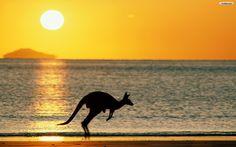 Download Australia Beach Free Wallpaper 1680x1050 | HD Wallpapers - #