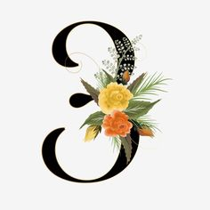 Png Floral, Frame Floral, Number Wallpaper, Birthday Countdown, Flower Words, Mother Daughter Quotes, Anniversary Pictures, Watercolor Rose, Numbers