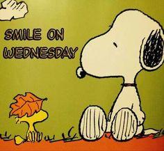 Snoopy..it's Wednesday