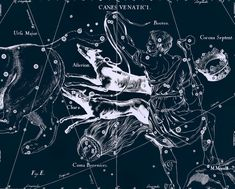 Constellation of Canes Venatici Zodiac Sign of by AstrologyZodiac, $10.99