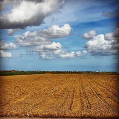 #view #scene #horizon #textures #clouds #skypainters #minimalist #minimal #nature  #naturelovers