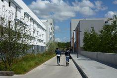Atelier de paysages Bruel Delmar - Écoquartier Bottière-Chênaie à Nantes - Parc & Espaces Publics