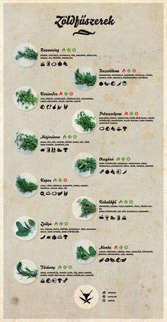 Ismeri a zöldfűszereket? Biztos?