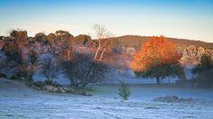 Hill End NSW Australia Landscape Photos, Landscapes, Australia, Travel, Painting, Art, Craft Art, Scenery, Trips