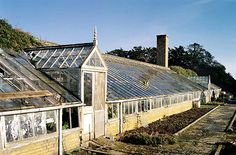 The North Glasshouse at Apethorpe Hall, Northamptonshire. I have a real weakness for traditional glass houses and it's distressing to see them run down and neglected (though I realise there's a certain poetic aesthetic in that too). English Heritage bought (and have since sold) the house for millions and spent millions more restoring it.
