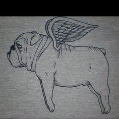 Flying English Bulldog.