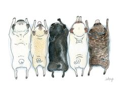 Pug Spectrum - Art print of our pug grumble ink and watercolor illustration with fawn, brindle and black pugs in a row by InkPug by InkPug on Etsy https://www.etsy.com/listing/188573894/pug-spectrum-art-print-of-our-pug