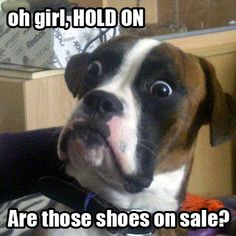 Soft Star Shoes annual clearance sale starts TODAY, Feb 5 at noon PST! #shoe #sale #online