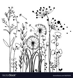 Find Flowers Grass On White Background Collection stock images in HD and millions of other royalty-free stock photos, illustrations and vectors in the Shutterstock collection. Thousands of new, high-quality pictures added every day. Doodle Art, Doodle Drawings, Vogel Silhouette, Flower Line Drawings, Floral Drawing, Botanical Line Drawing, Drawing Art, Flower Doodles, Arte Floral