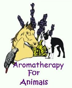 Natural insect repellants  essential oils for fleas, ticks and mosquitos