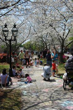 Macon, Georgia Cherry Blossom Festival