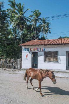 Santo Amaro in Lençóis Maranhenses National Park | heneedsfood.com