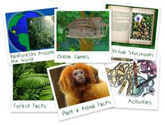 Kids corner to learn about the rain forest. games. storyboards. facts. activites.