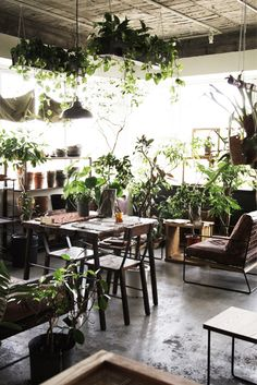 #OfficeInteriors | meet me in the garden room, Green Office Interiors with plants, via @sunjayjk