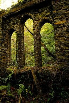 The Infinite Gallery : Ancient Arches, Wales