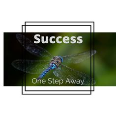What stops us from being successful, achieving our goals and living the lives we've dreamed of? In a nutshell – YOU!! That's right, when it comes to success we are our worst enemi…