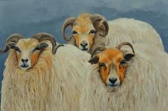 acryl schilderij Drentse heideschapen  (met dank aan a1949 voor de oorspronkelijke foto)