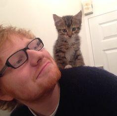 Ed Sheeran – Celebridades que adoran a sus gatos Crazy Cat Lady, Crazy Cats, Edward Christopher Sheeran, Taylor Swift Cat, National Cat Day, Son Chat, Photo Chat, Cat People, Chris Hemsworth