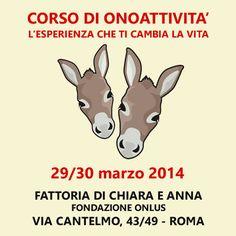 ATTIVITÀ E CORSI. Courtesy: Damiano Biscossi, Donkey Project. Roma (Italy).