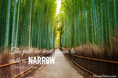 """Elder Zeballos: """"The path we have chosen to walk is narrow."""" 