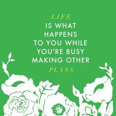 #larsflowers #madewithstudio