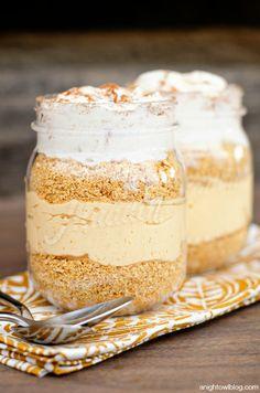 Easy No Bake Pumpkin Cheesecake