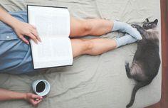 Ne Kitaplardan Ne de Kedilerden Vazgeçebilen İnsanların Sıkça Karşılaştıkları 9 Durum