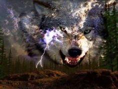 Indian's calling for Wolves spirit - YouTube