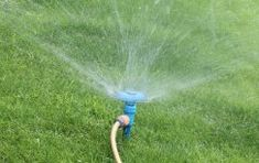 Wise Water Solutions Ltd is a specialist supplier of Irrigation Equipments and associated products including watering systems, Sprinkler Systems in the UK. Home Sprinkler System, Best Sprinkler, Sprinkler Heads, Organic Lawn Care, Cedar Shed, Types Of Lawn, Lush Lawn, Lawn Sprinklers, Plants